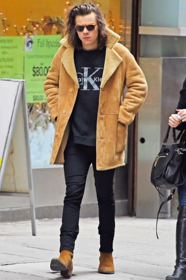Harry-Styles-Calvin-Klein-Sweatshirt-Picture-800x1200